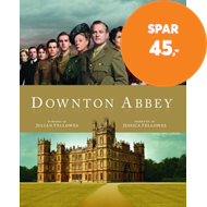 Produktbilde for Downton Abbey - et samfunn i endring (BOK)