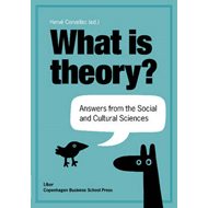 What is Theory?: Answers from the Social & Cultural Sciences (BOK)