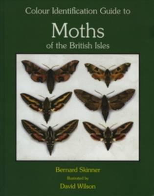 Colour Identification Guide to Moths of the British Isles: Macrolepidoptera (BOK)