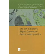 UN Children's Rights Convention: Theory Meets Practice (BOK)
