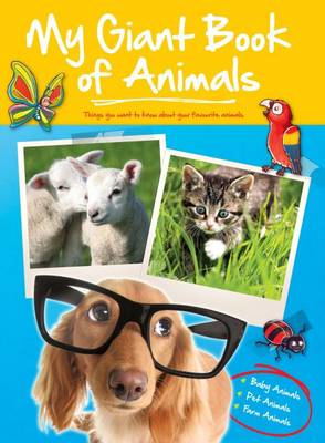 Big Book of Animals Baby Farm Pets (BOK)