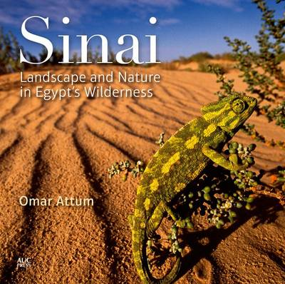 Sinai: Landscape and Nature in Egypt's Wilderness (BOK)