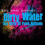 Dirty Water: The Birth Of Punk Attitude (2CD)