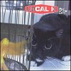 Pack Up The Cats (CD)