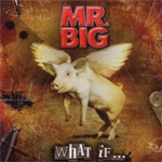 What If... (CD)