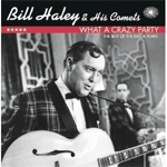What A Crazy Party - Best Of The Decca Years (CD)