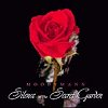 Silence In The Secret Garden (CD)