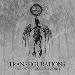 Transfigurations (CD)