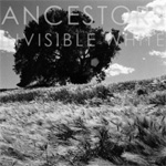 Invisible White (CD)