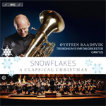 Snowflakes - A Classical Christmas (CD)