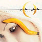 Thirteenth Step (CD)