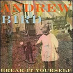 Break It Yourself - Deluxe Edition (CD + DVD)