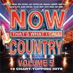 Now That's What I Call Country 5 (CD)