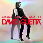 Nothing But The Beat 2.0 (CD)