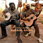 Brothers In Bamako (CD)