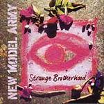 Strange Brotherhood (CD)