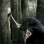 Bushcraft (CD)