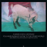 You Have Already Gone To The Other World (CD)