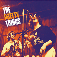 Introducing The Pretty Things (2CD)