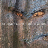 Into The Woodwork (CD)