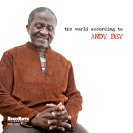 The World According To Andy Bey (CD)