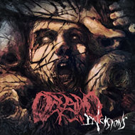 Incisions (CD)