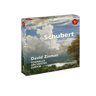 Produktbilde for Schubert: The Symphonies (5CD)