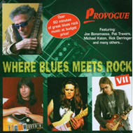 Where Blues Meets Rock Vol. 7 (CD)