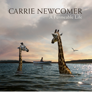 A Permeable Life (CD)