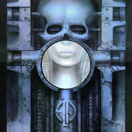 Brain Salad Surgery - Deluxe Edition (2CD+DVD-A)