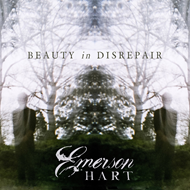 Beauty In Disrepear (CD)