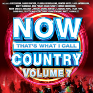 Now That's What I Call Country 7 (CD)