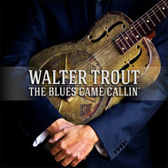 The Blues Came Callin' (CD)