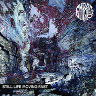 Still Life Moving Fast (CD)