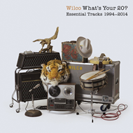 Produktbilde for What's Your 20? Essential Tracks 1994-2014 (2CD)