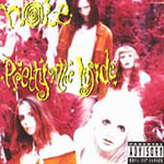 Pretty On The Inside (CD)