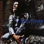 When Disaster Strikes (CD)