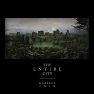 The Entire City (CD)