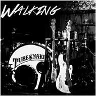Walking (CD)