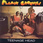 Teenage Head (CD)