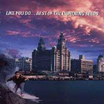 Like You Do: The Best Of (CD)