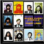 Fuzzy Logic (CD)