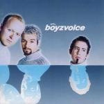Get Ready To Be Boyzvoiced (CD)