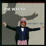 Look What I Did! The Joe Walsh Anthology (2CD)