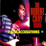 False Accusations (CD)