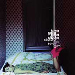 Dizzy Up The Girl (CD)