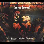 Late Night Blues (CD)