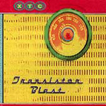 Transistor Blast: The Best Of The BBC Sessions (4CD)