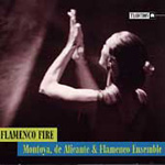Flamenco Fire (CD)