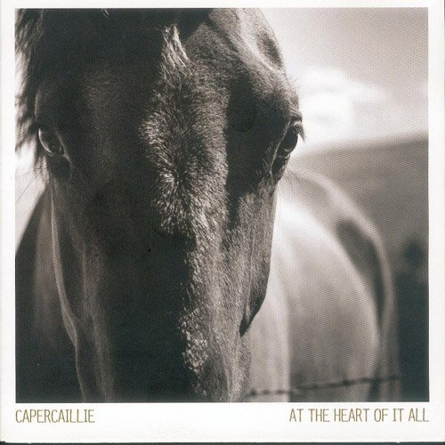 At The Heart Of It All (CD)